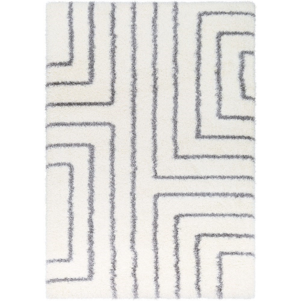 Cloudy Shag 2' x 3' Rug by Surya at Coconis Furniture & Mattress 1st