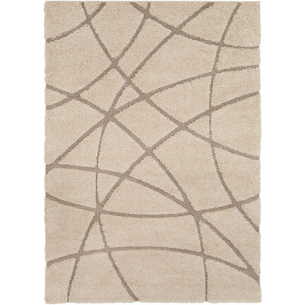 Cut & Loop Shag 2' x 3' Rug by Surya at Factory Direct Furniture
