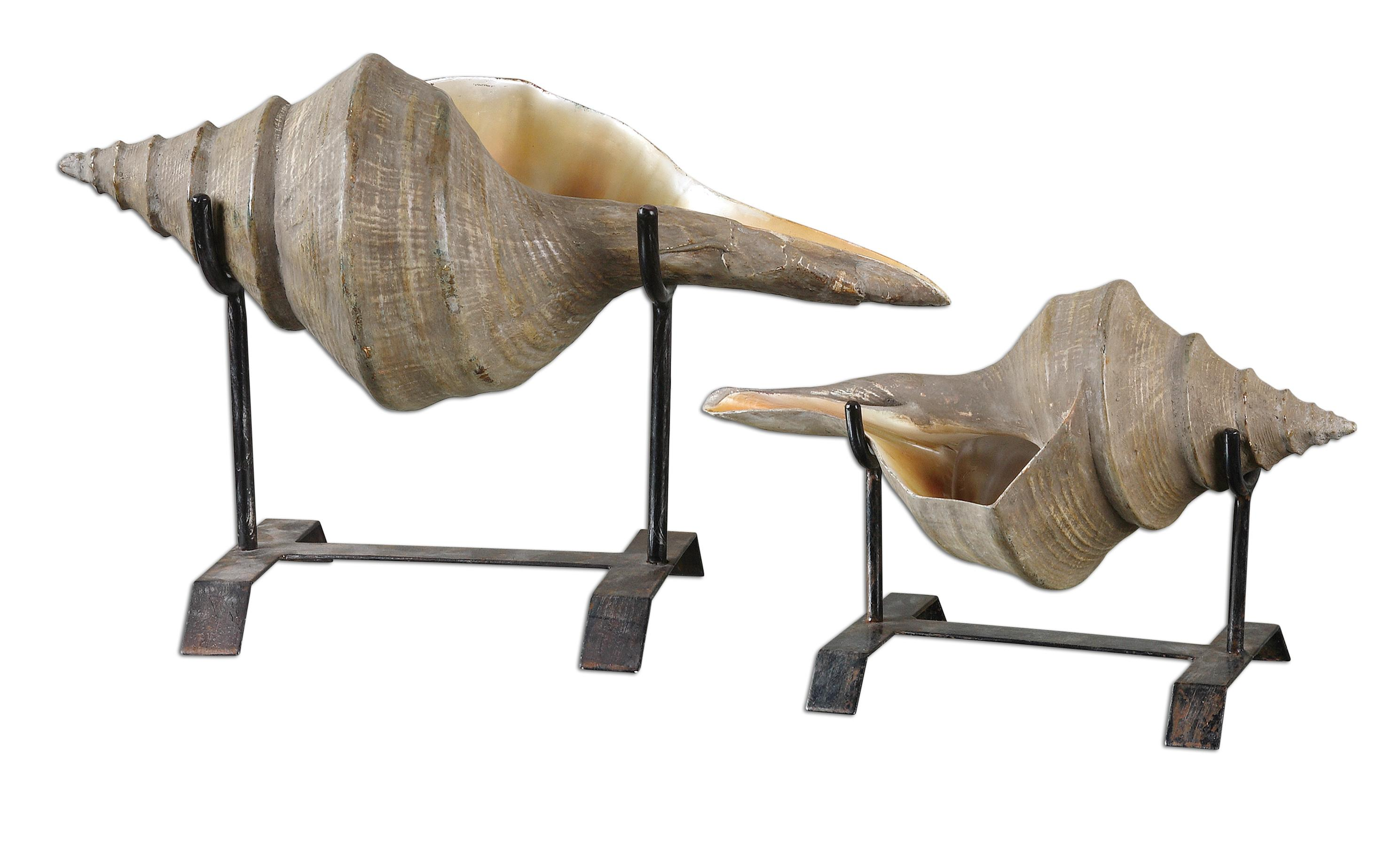 Accessories - Statues and Figurines Conch Shell Sculpture Set of 2 by Uttermost at Mueller Furniture
