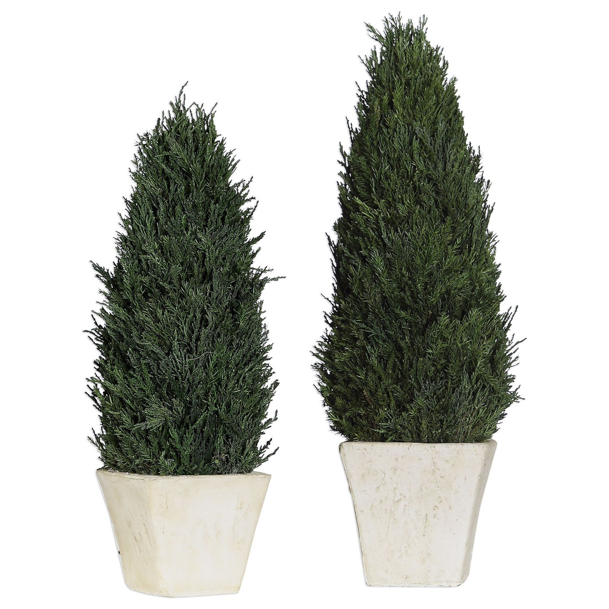 Accessories Cypress Cone Topiaries, S/2 by Uttermost at Mueller Furniture