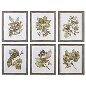Seedlings Framed Prints (Set of 6)
