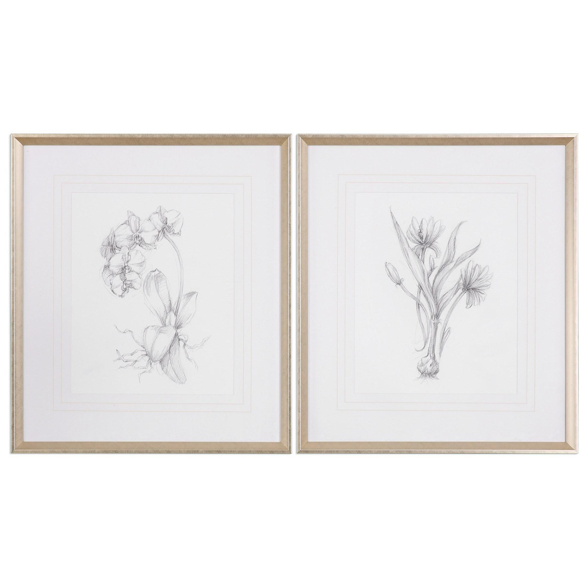 Framed Prints Botanical Sketches (Set of 2) by Uttermost at Mueller Furniture