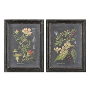 Midnight Botanicals Framed Prints, Set of 2