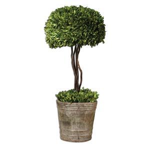 Preserved Boxwood Tree Topiary
