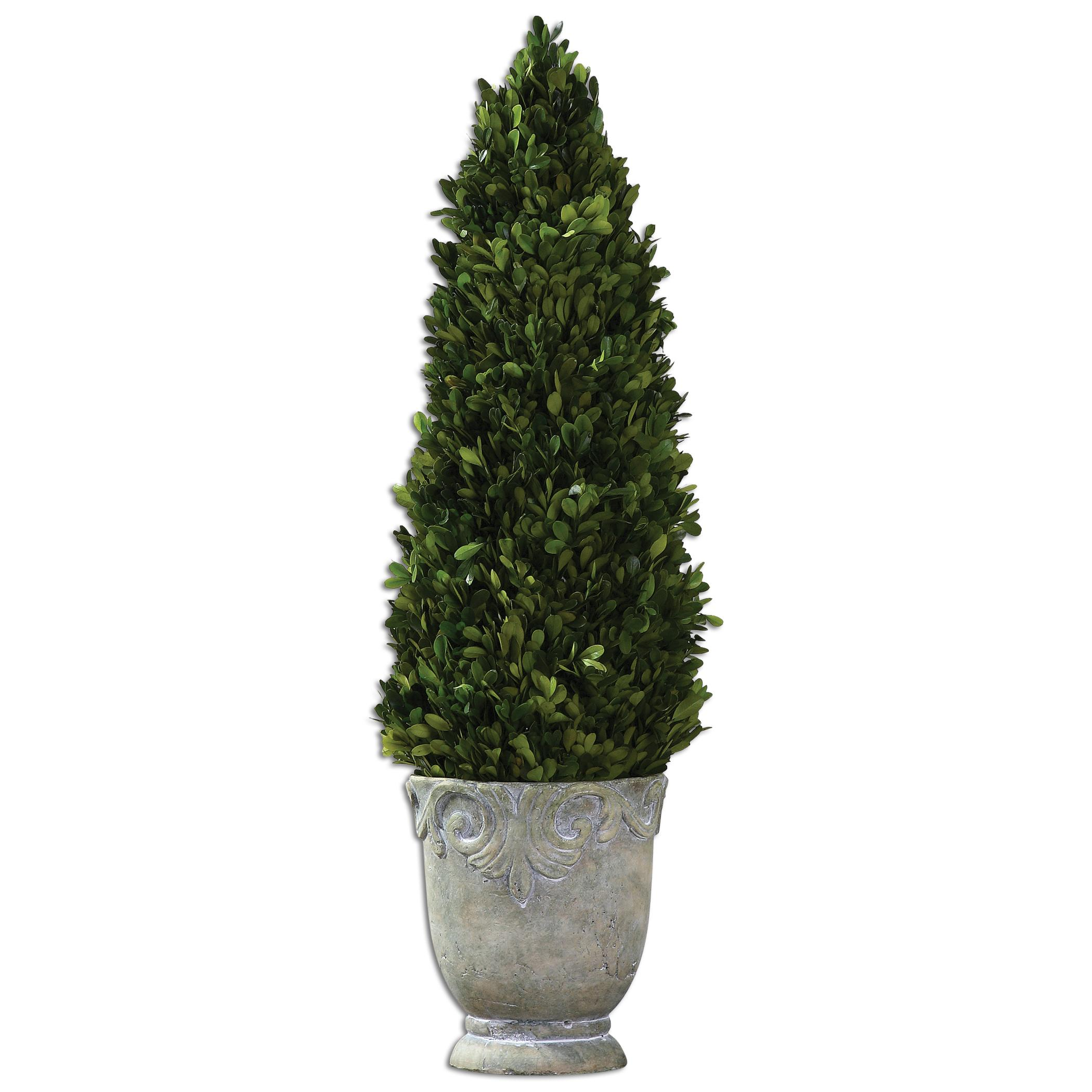 Botanicals Boxwood Cone Topiary by Uttermost at Miller Waldrop Furniture and Decor