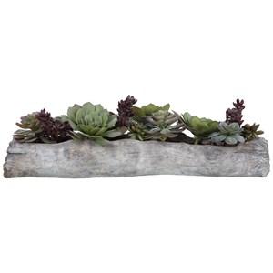 Charita Lush Succulents