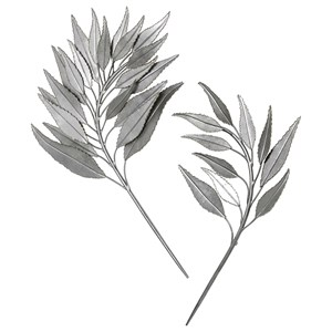 Branches Metal Wall Decor, S/2