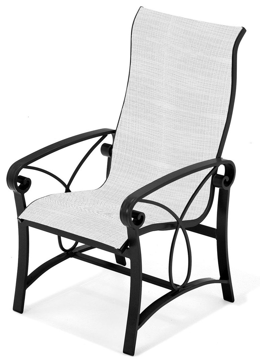 Palazzo Sling Ultra High Back Dinner Chair by Winston at Johnny Janosik