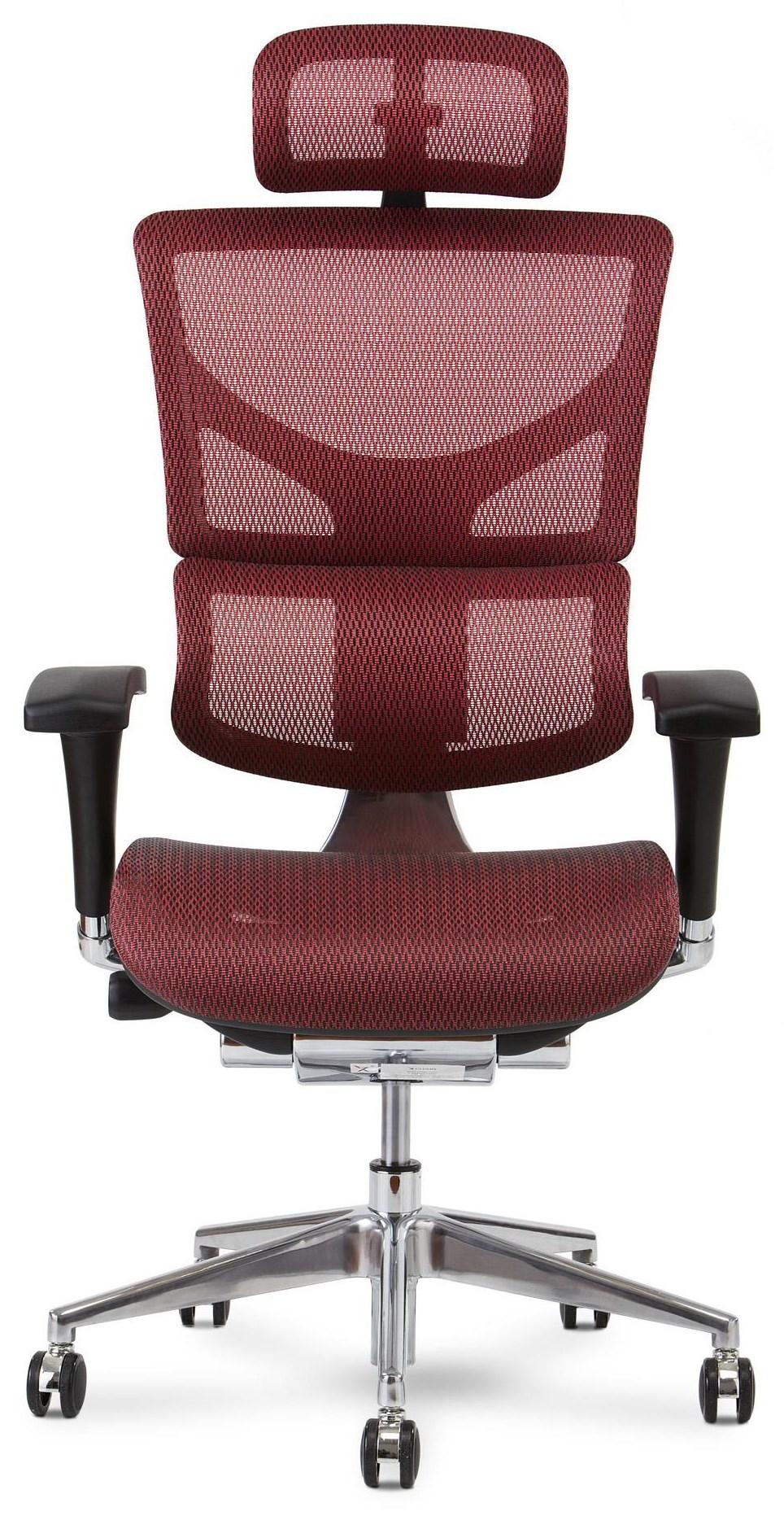 X2 Executive Chair by X-Chair at HomeWorld Furniture
