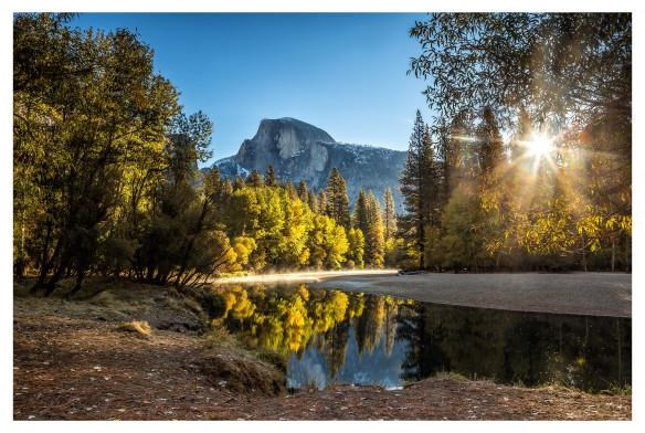 YHD WALL DECOR MORNING IN PARADISE by Yosemite Home Decor at Walker's Furniture
