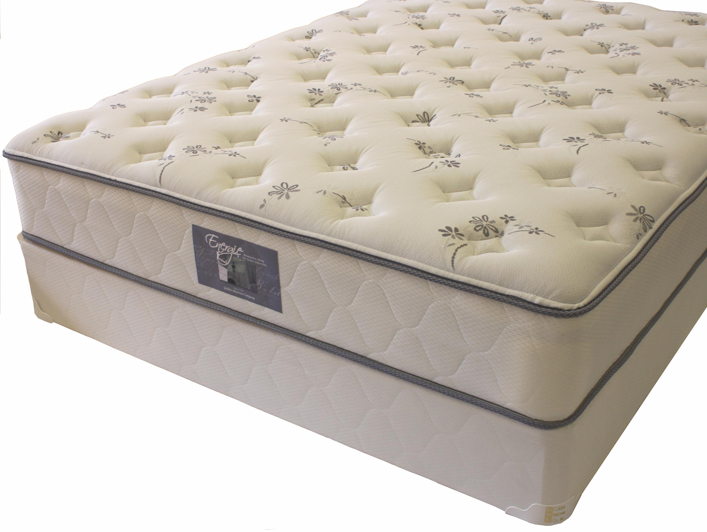 golden mattress company energie king plush mattress dream home furniture mattress. Black Bedroom Furniture Sets. Home Design Ideas